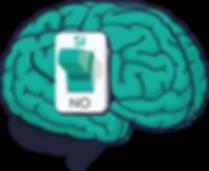 brain-04.png