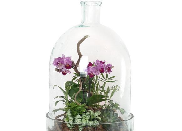 Композициция с орхидеей в декоративной бутылке