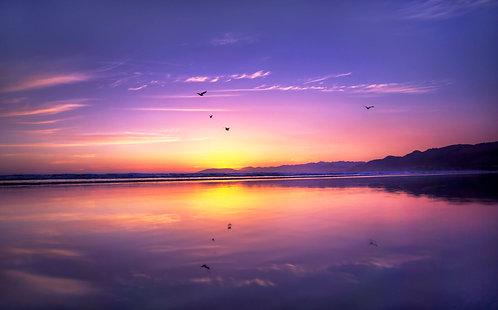 Dreamstate - Pismo Beach, California