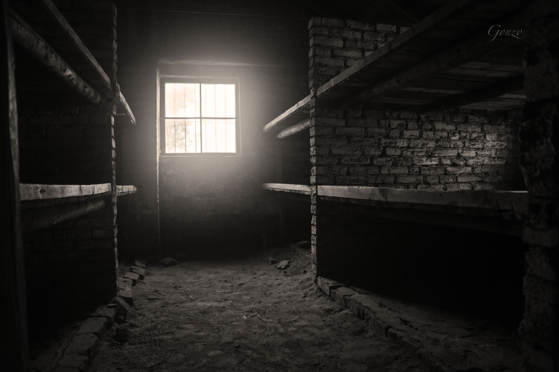 Birkeneau Bunkers