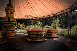 Abandoned Tea Cups