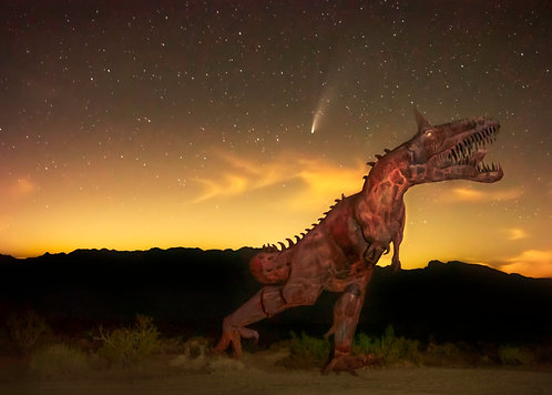 The End Of An Era - Borrego Springs, California