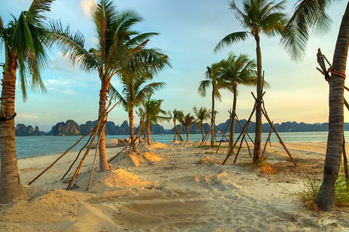 Oasis - Halong Bay, Vietnam