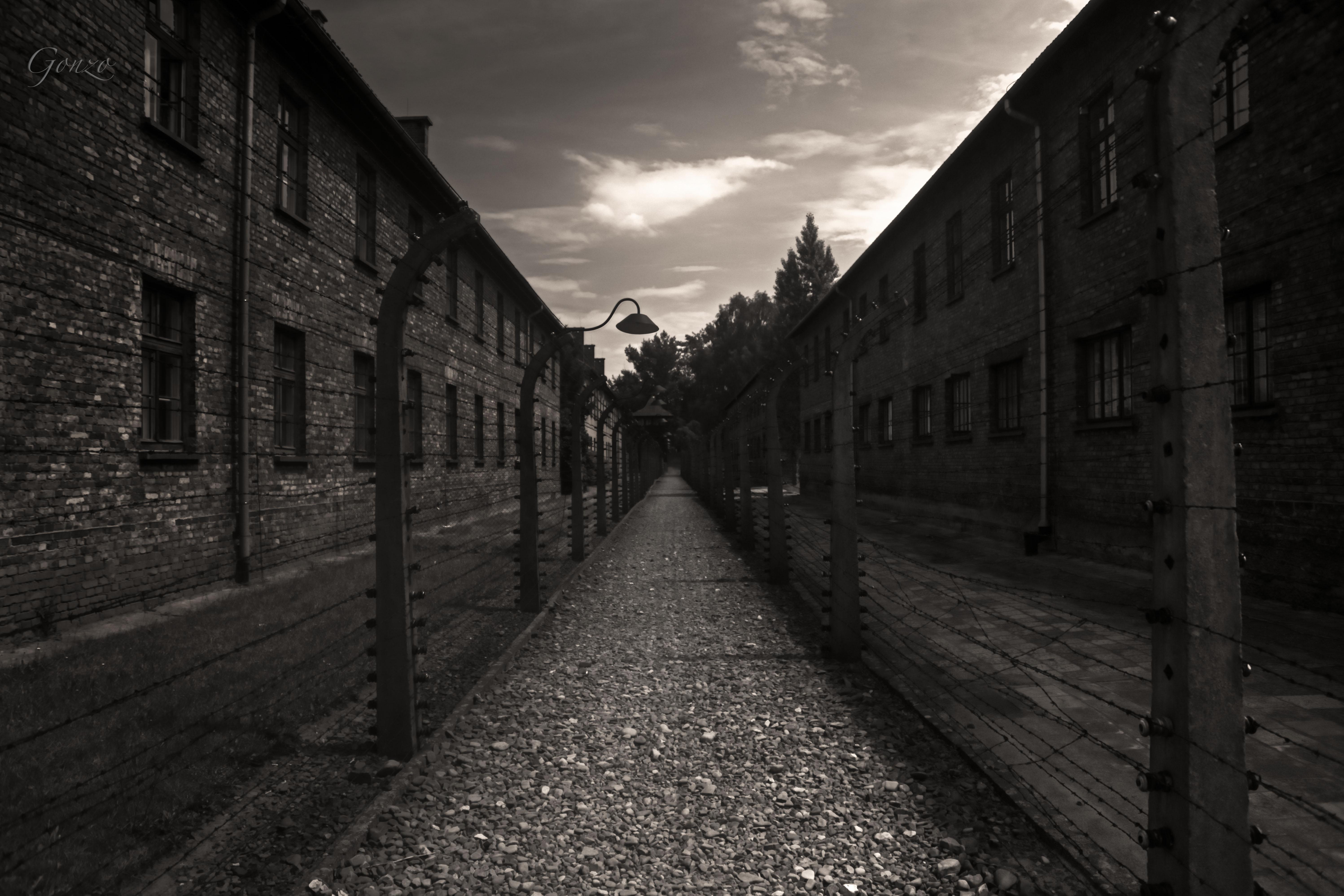 Between Camps in Auschwitz