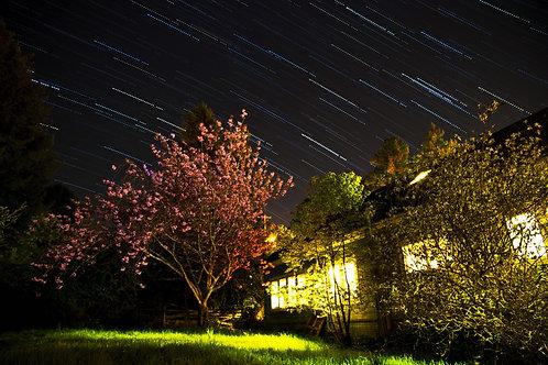 Starry Nights - Humbolt, California