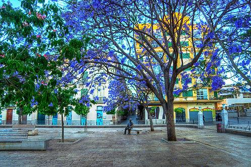 Time To Think - Málaga, Spain
