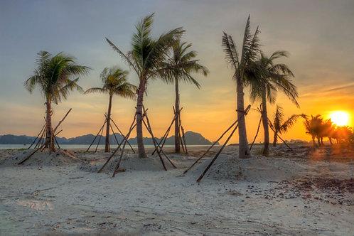 Majestic Illusion - Ha Long Bay, Vietnam
