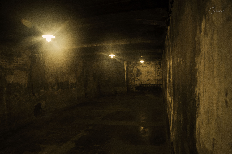Gas Chambers Auschwitz