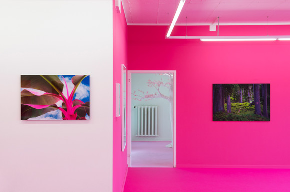 """Exhibition view """"instinctive desire vol.III"""" balzer projects 2017"""