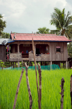 AMRU Rice in Cambodia for ResponsAbility