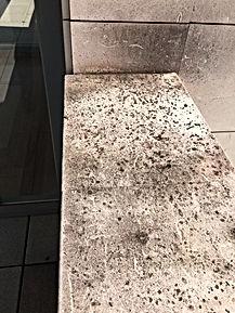 Limpieza de fachadas y hongos