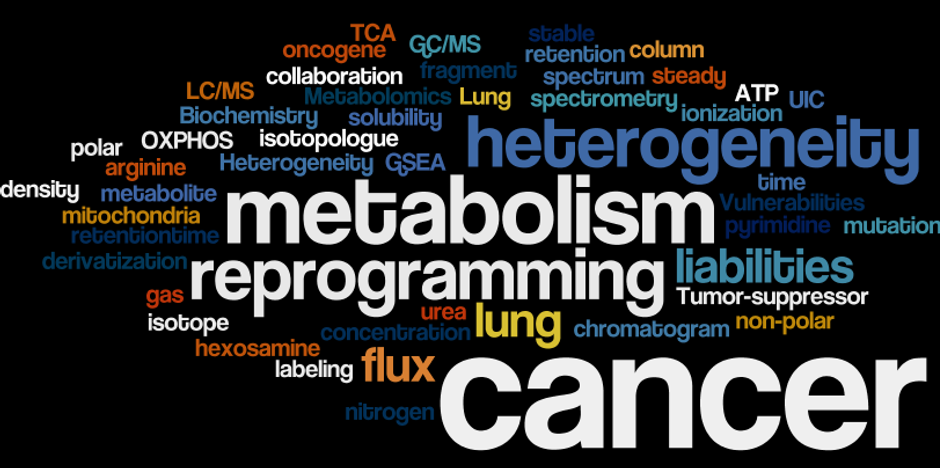 wordle-14-1.png