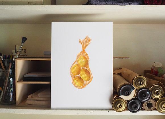 Lemon Titty Archival Print