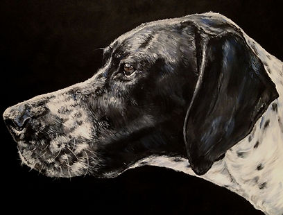 Pointer finished portrait.jpg