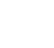 blossom street logo.png