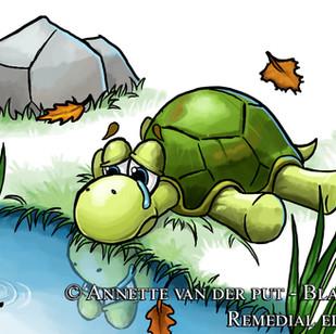 De Schildpad 2.jpg