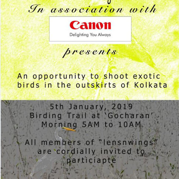 Birding Trail At Gocharan (with Canon)