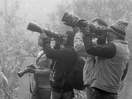 Moments from Gocharan Birding Photo Walk