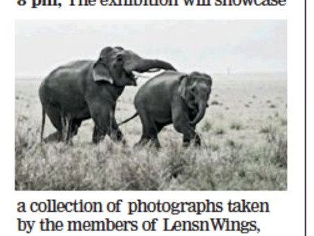 Exhibition details published in the Times of India, Kolkata