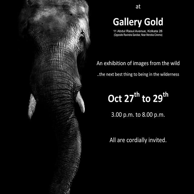 Nature, Wildlife & Heritage Photography Exhibition 2017