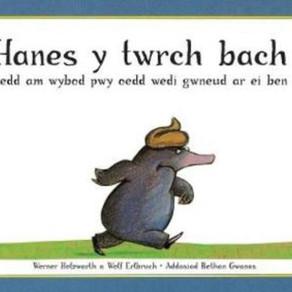 'Hanes y Twrch Bach oedd am Wybod Pwy oedd Wedi Gwneud ar ei Ben' - (addas. Bethan Gwanas)