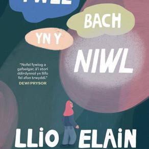 Twll Bach yn y Niwl - Llio Elain Maddocks