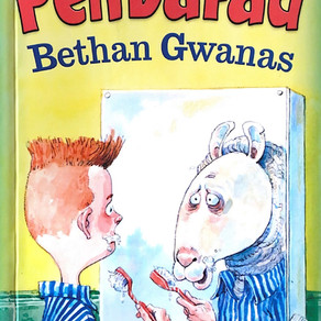 Pen Dafad - Bethan Gwanas