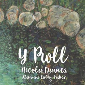 Y Pwll - Nicola Davies