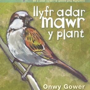Llyfr adar mawr y plant - Onwy Gower