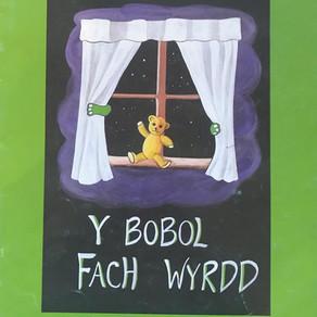 Y Bobol Fach Wyrdd - Mai Parri