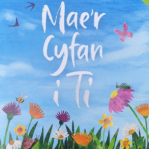 Mae'r Cyfan i Ti  - Luned Aaron