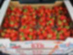 Jordbær_12_stk.jpg