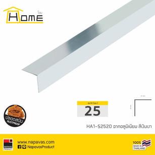 HA1-S2520