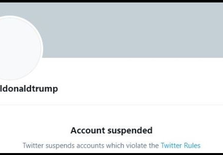 The Right Resistance: Did Donald Trump's Twitter ban save his political career from himself?