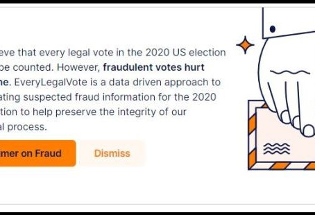 Tell State Legislators To Do Their Constitutional Duty To Correct Election Fraud