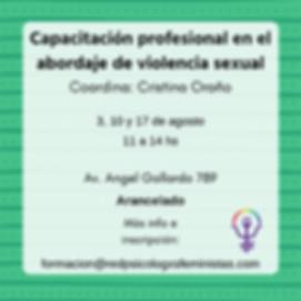 Capacitación_profesional_en_el_abordaje_