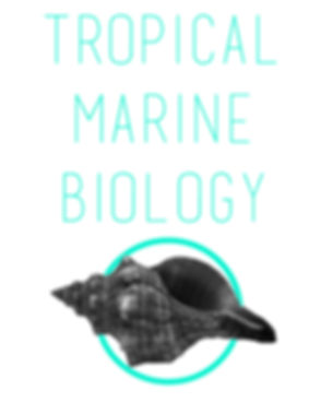 tropical marine biology.jpg