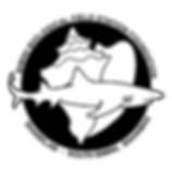 BBFSF-HiRESLogo(nobackground)99-2019-fin