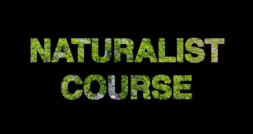 NATURALISTg.png
