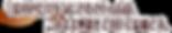熊本市八王寺美容室ホワイトストーンのヘナ紹介①髪の色だけをきにされt気にされている方は結構です。