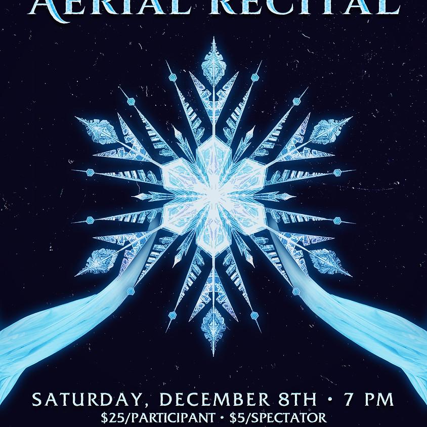 Winter Solstice Aerial Recital