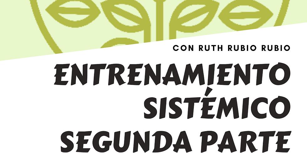 ENTRENAMIENTO SISTÉMICO BÁSICO (SEGUNDA PARTE) ON LINE con Ruth Rubio