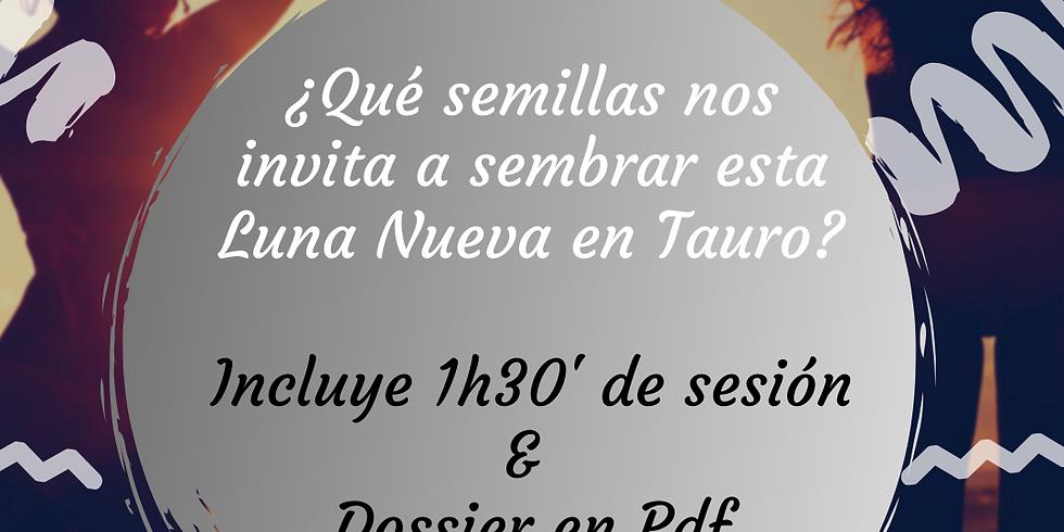 CÍRCULO DE LA LUNA NUEVA EN TAURO ON-LINE