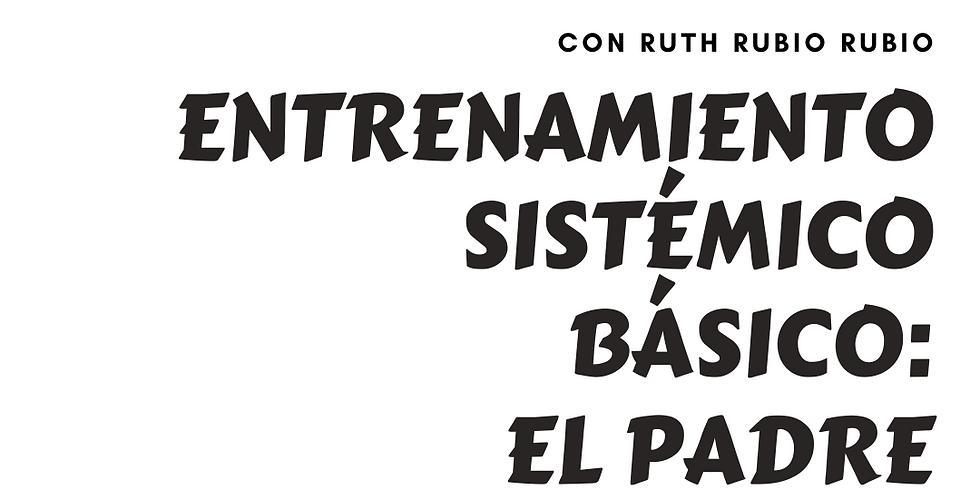 ENTRENAMIENTO SISTÉMICO BÁSICO: EL PADRE ON LINE