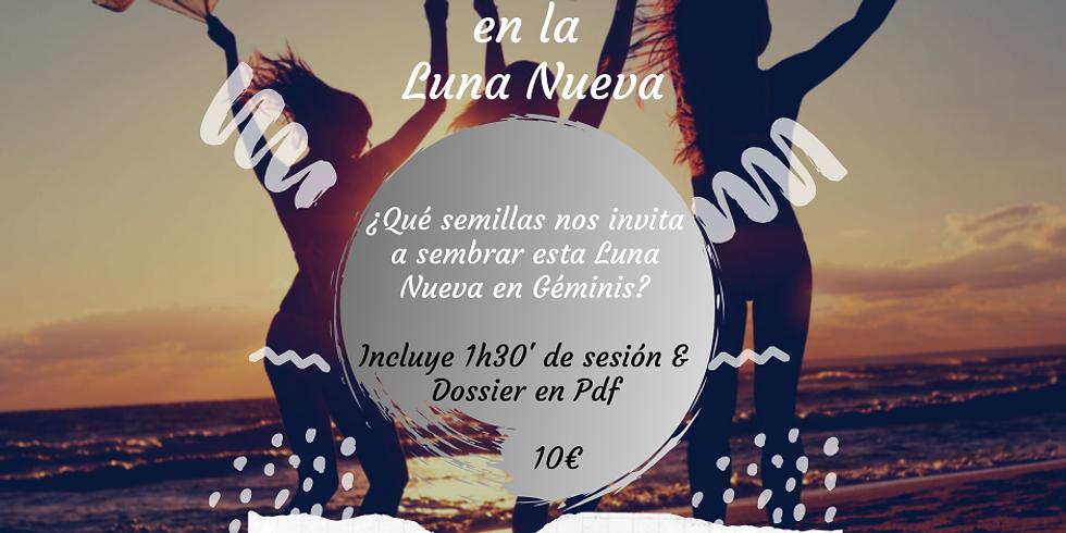 CÍRCULO DE LA LUNA NUEVA EN GÉMINIS ON-LINE