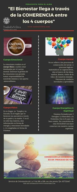 infografía_TEV
