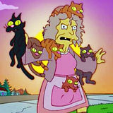 crazy cat lady.jpg