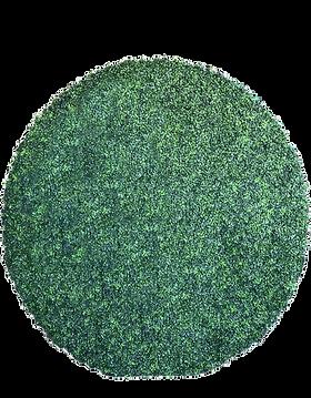 Final circle hedgewall.png