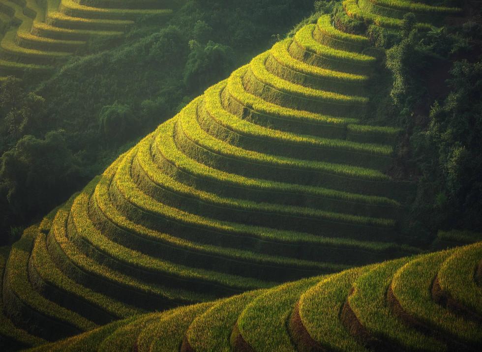 Bali 2.jpeg