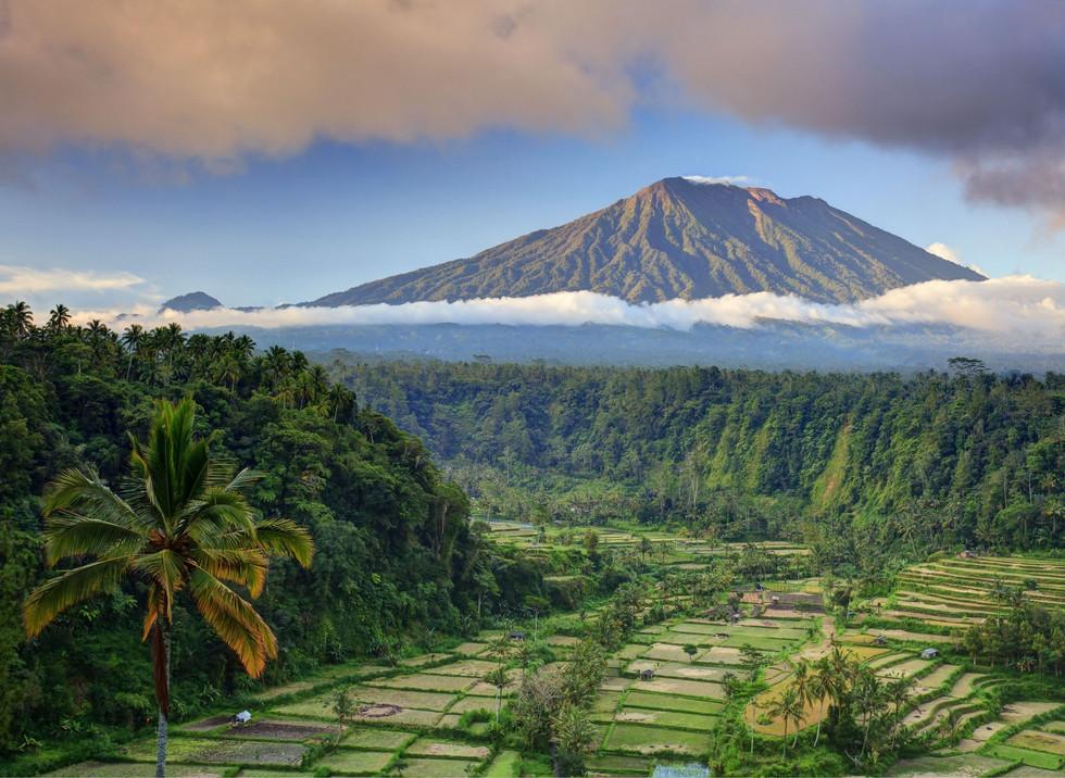 Bali 1.jpeg